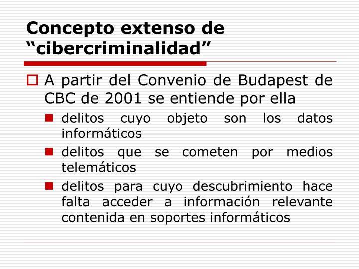 """Concepto extenso de """"cibercriminalidad"""""""