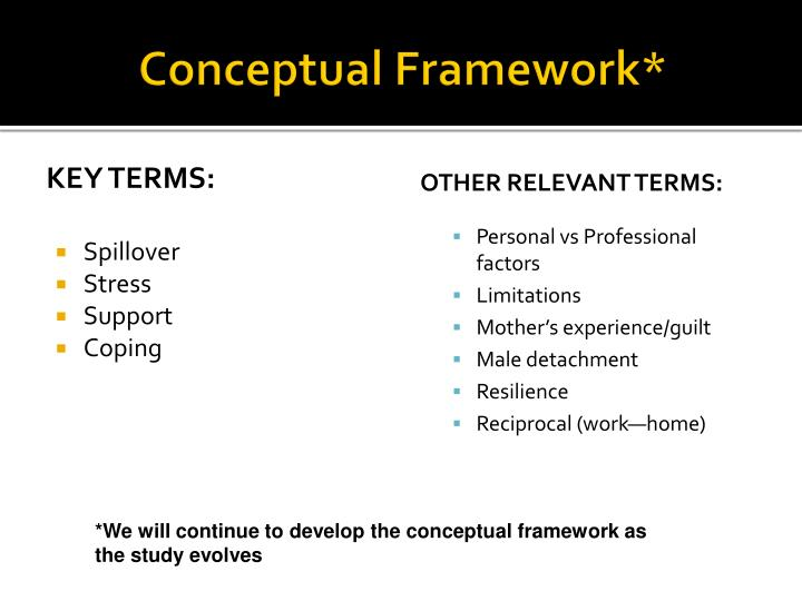Conceptual Framework*