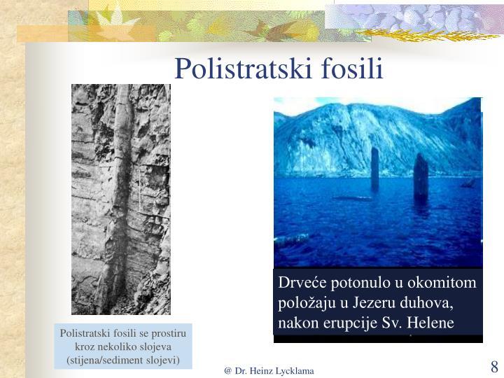 Polistratski fosili