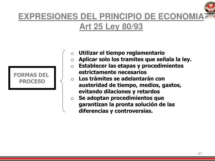 EXPRESIONES DEL PRINCIPIO DE ECONOMIA