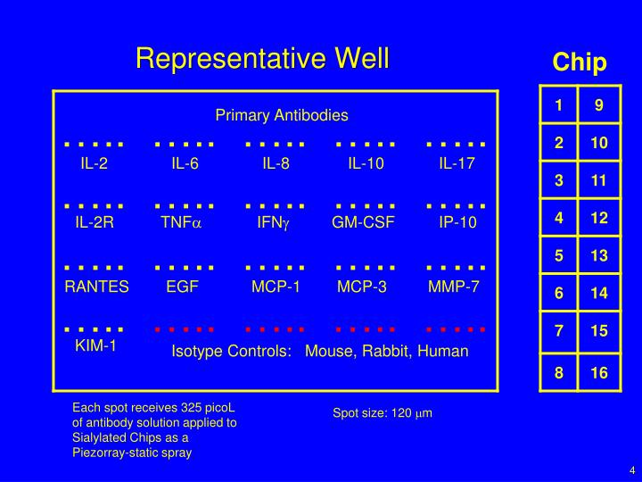 Representative Well