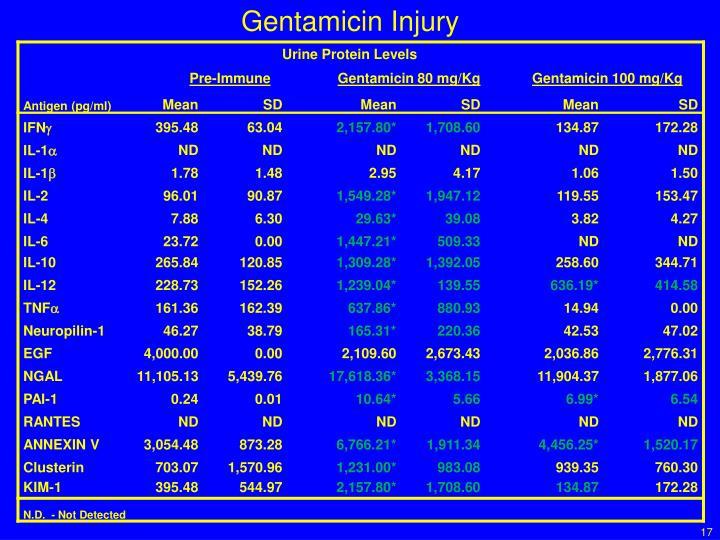 Gentamicin Injury
