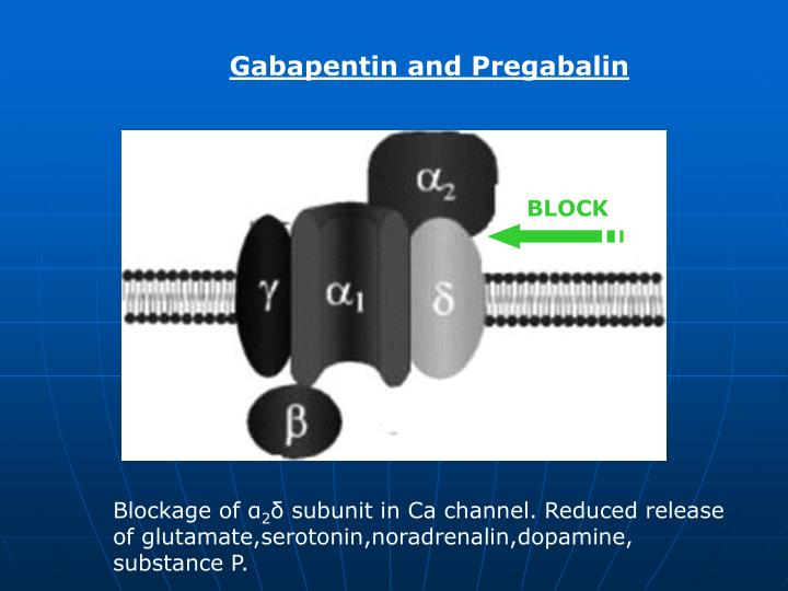 Gabapentin and Pregabalin