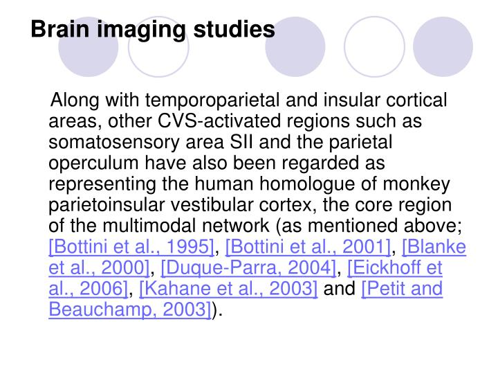 Brain imaging studies