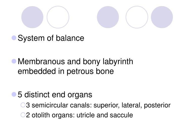 System of balance