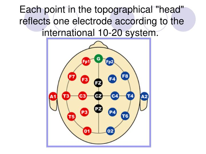 "Each point in the topographical ""head"" reflects one electrode according to the international 10-20 system."