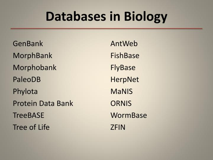 Databases in Biology