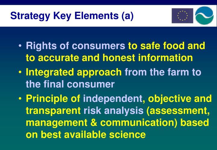 Strategy Key Elements (a)