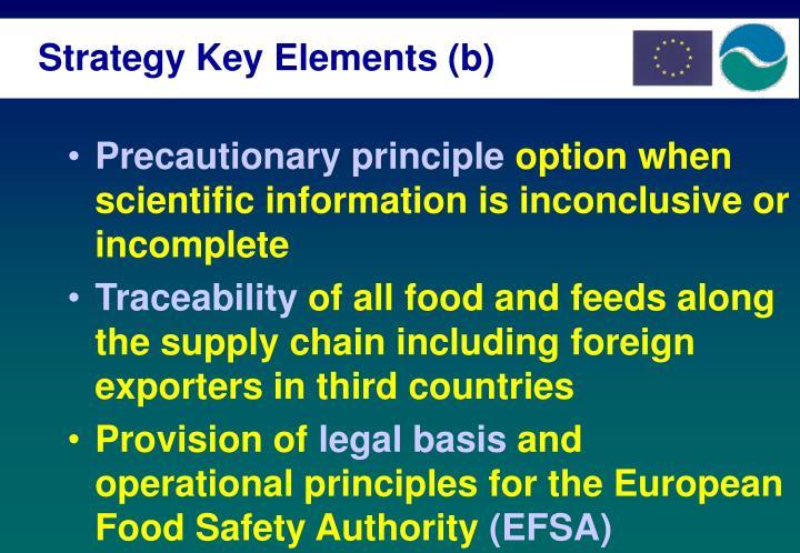 Strategy Key Elements (b)