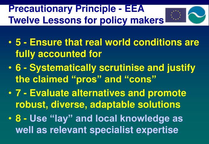 Precautionary Principle - EEA