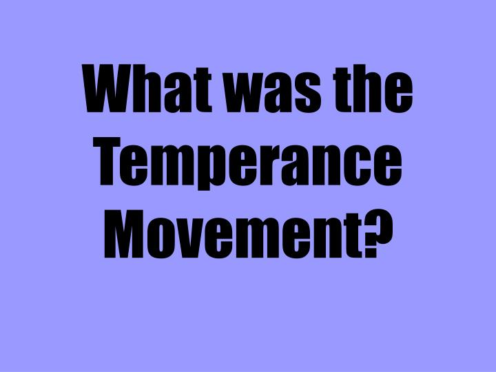 What was the Temperance Movement?
