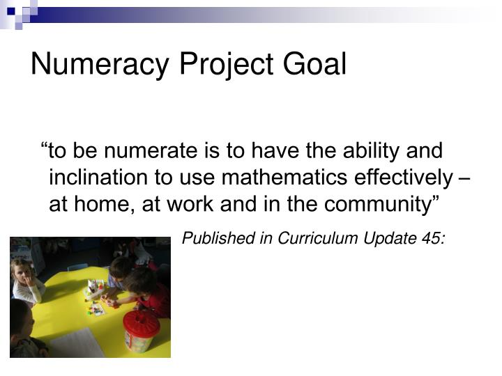 Numeracy project goal