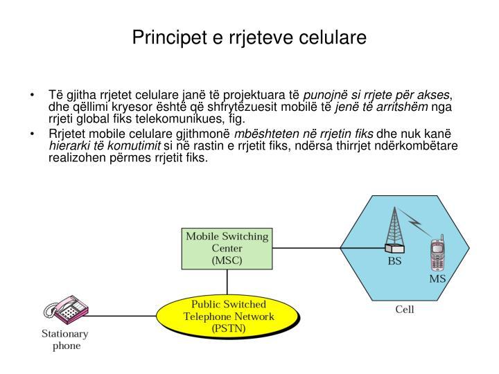 Principet e rrjeteve celulare