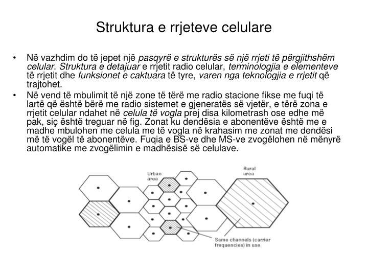 Struktura e rrjeteve celulare