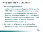 what does the wg chair do