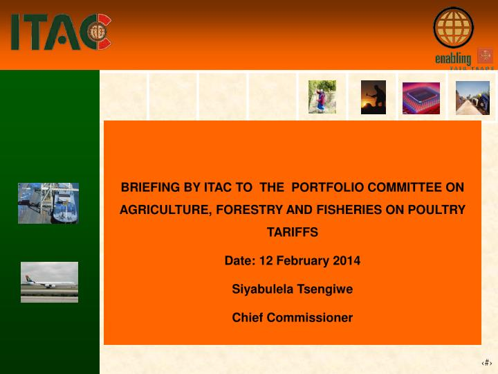 BRIEFING BY ITAC TO  THE  PORTFOLIO COMMITTEE ON AGRICULTURE, FORESTRY AND FISHERIES ON POULTRY TARIFFS