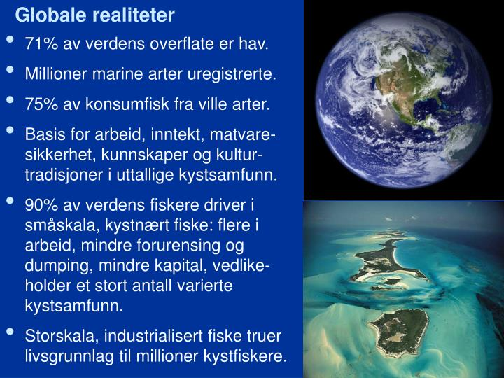 Globale realiteter