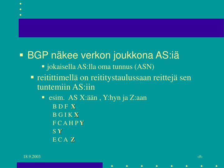 BGP näkee verkon joukkona AS:iä