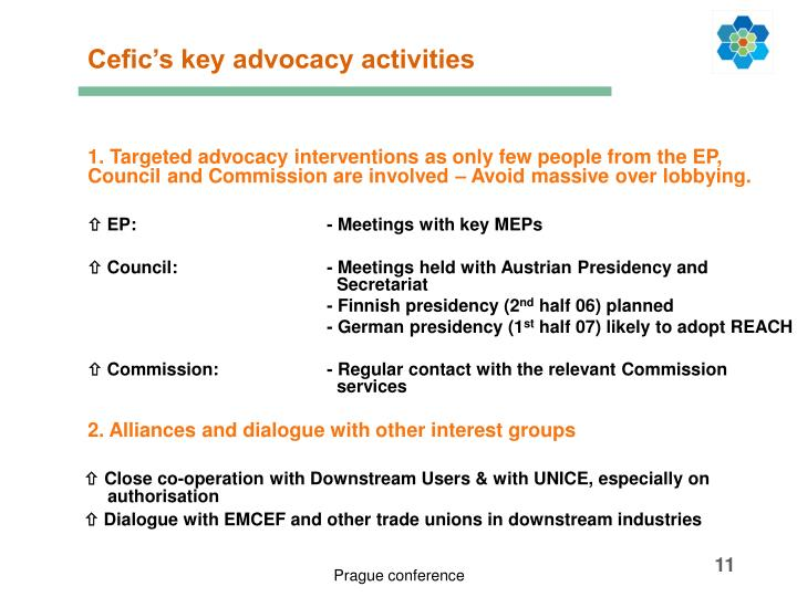 Cefic's key advocacy activities