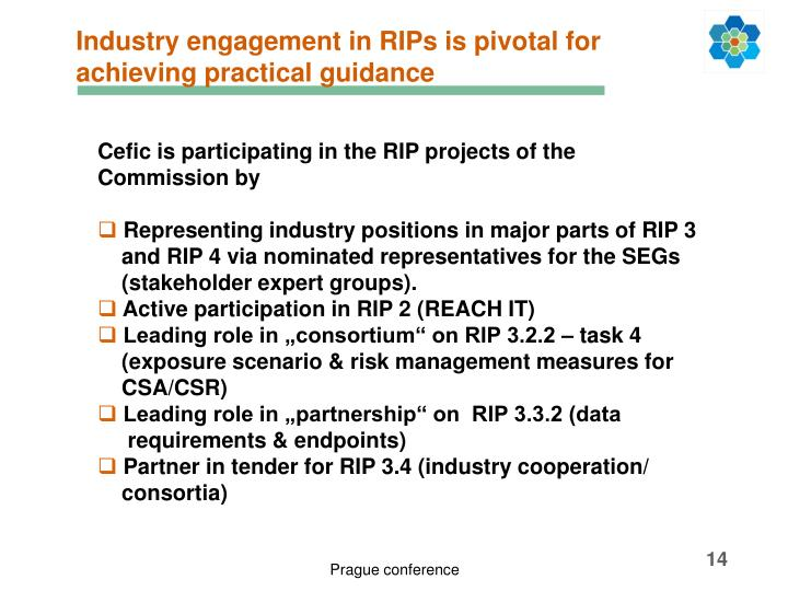 Industry engagement in RIPs is pivotal for achieving practical guidance