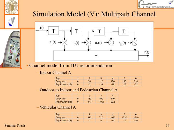 Simulation Model (V):