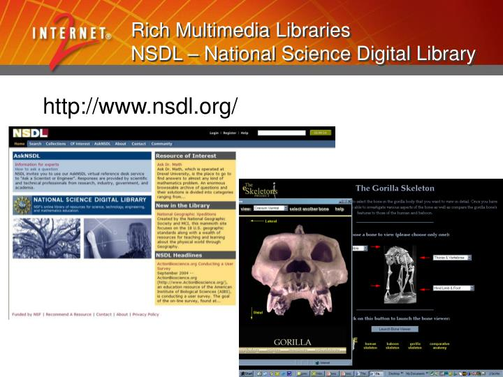 Rich Multimedia Libraries