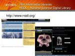 rich multimedia libraries nsdl national science digital library