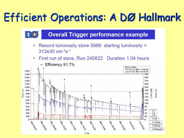 Efficient Operations: A DØ Hallmark