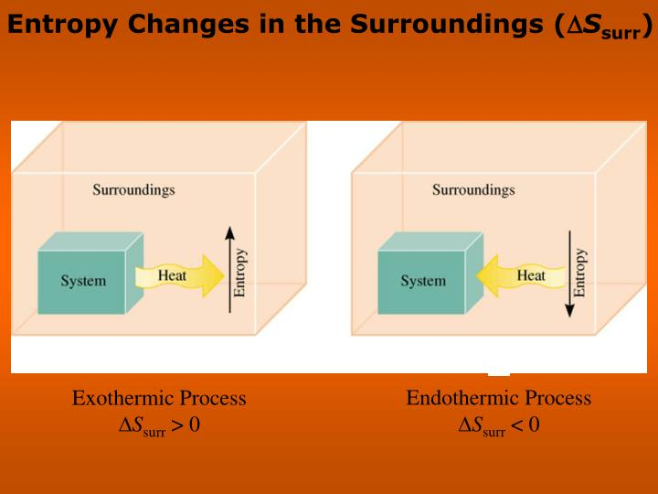 Entropy Changes in the Surroundings (