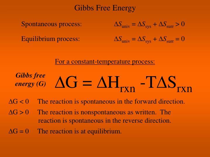 Gibbs Free Energy