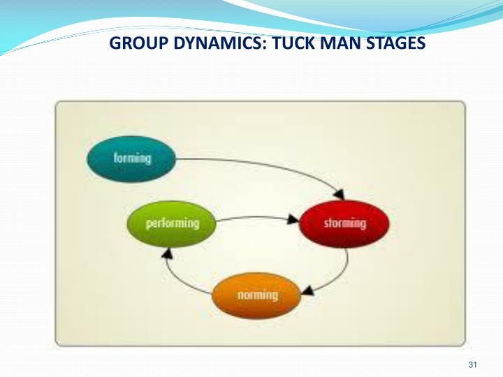 GROUP DYNAMICS: TUCK MAN STAGES