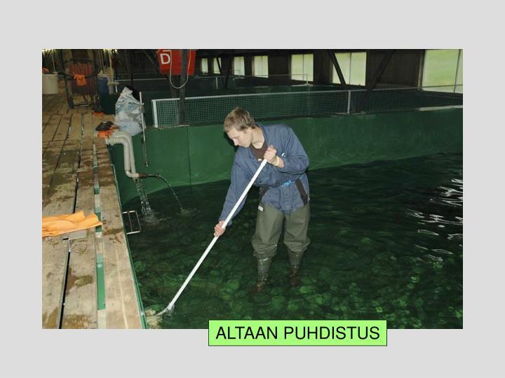 ALTAAN PUHDISTUS