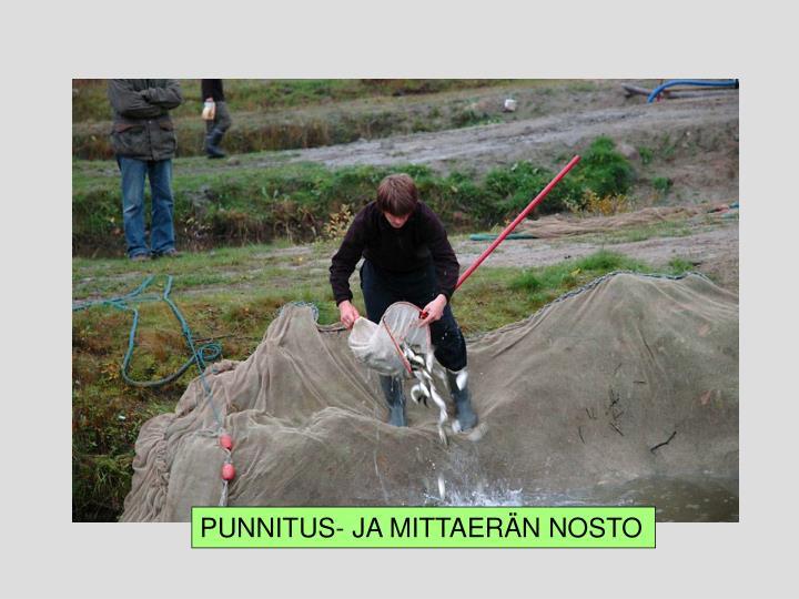 PUNNITUS- JA MITTAERÄN NOSTO