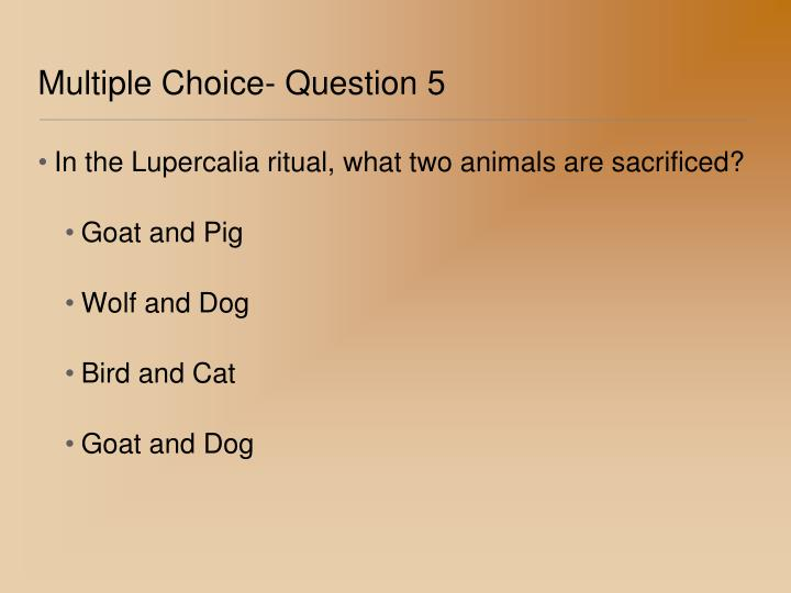 Multiple Choice- Question 5
