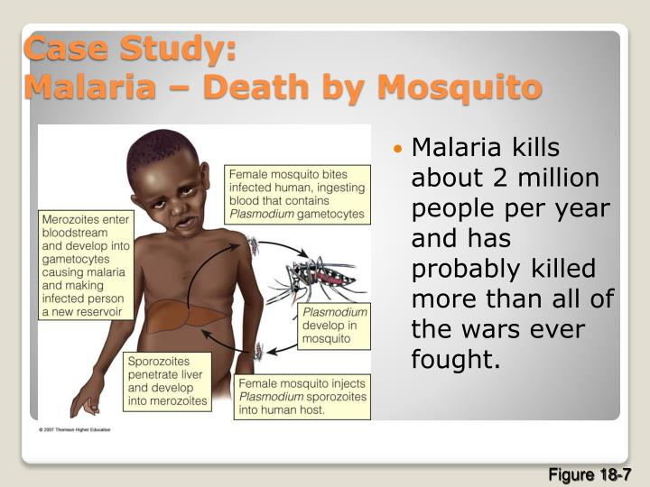 Malaria kills about 2 million people per year and has probably killed more than all of the wars ever fought.