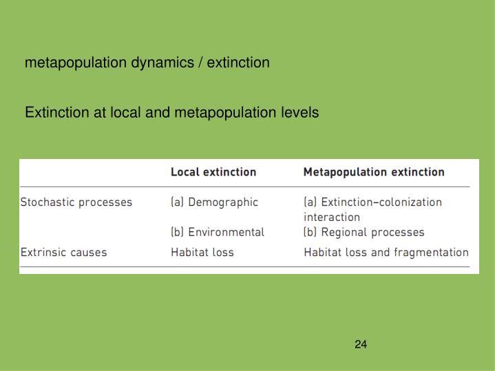 metapopulation dynamics / extinction