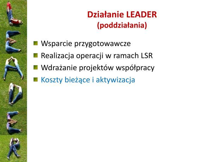 Działanie LEADER
