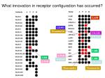 what innovation in receptor configuration has occurred