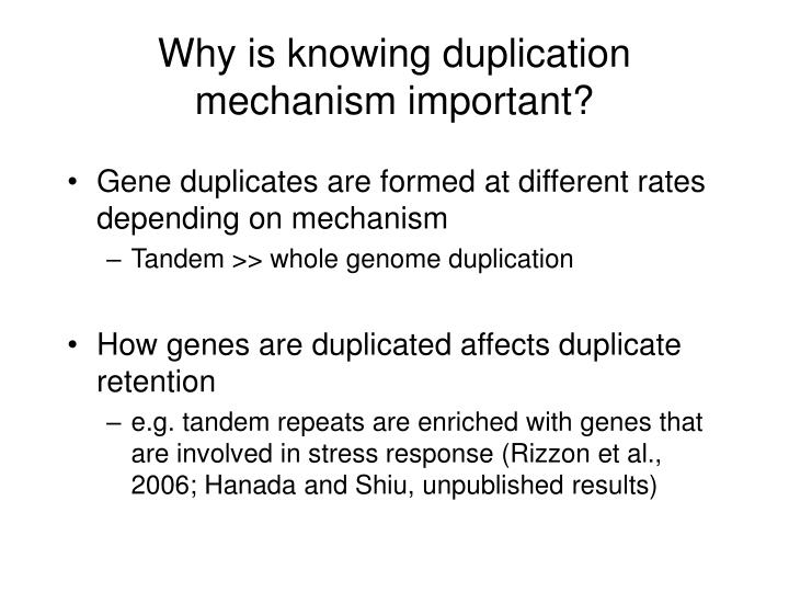 Why is knowing duplication mechanism important?