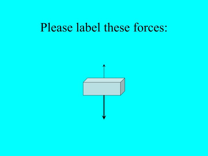 Please label these forces: