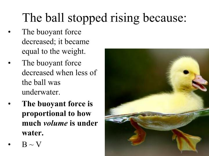 The ball stopped rising because: