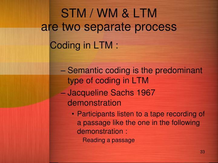 STM / WM & LTM