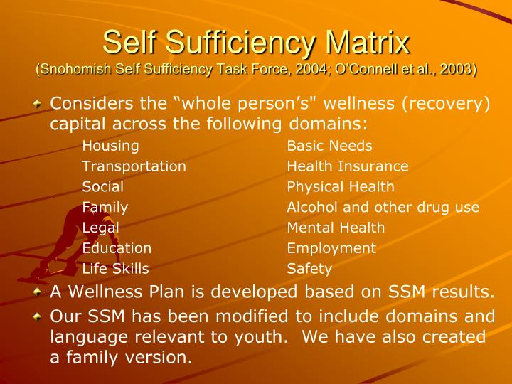 Self Sufficiency Matrix