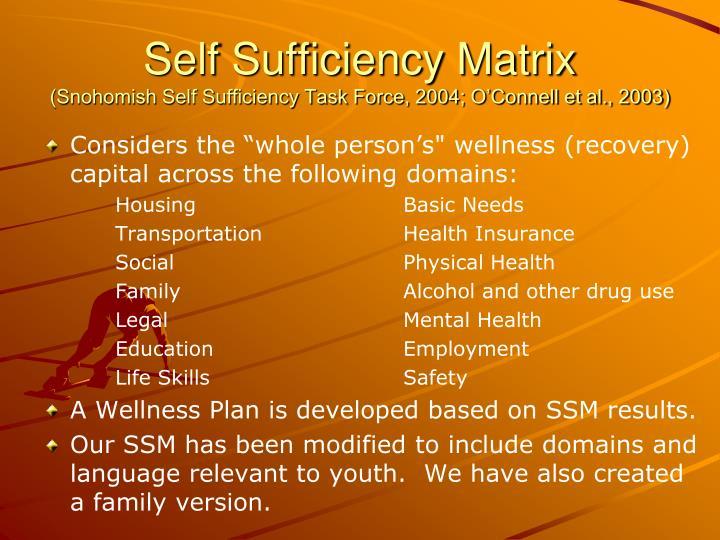 Self Sufficiency Matrix