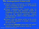 the management framework