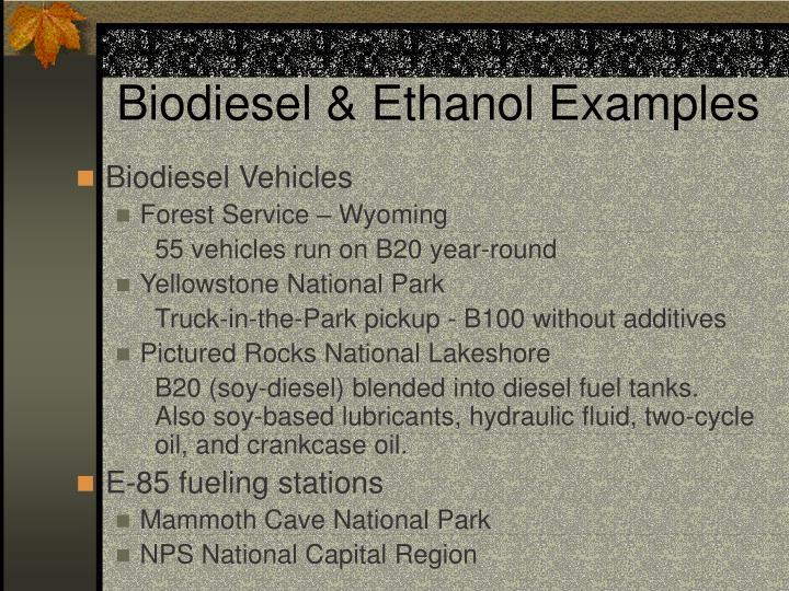 Biodiesel & Ethanol Examples