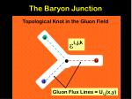 the baryon junction