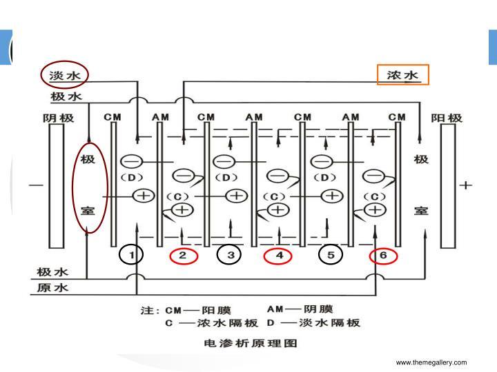 电渗析工作原理如图