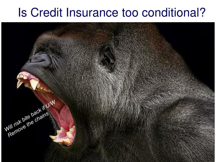 Is Credit Insurance too conditional?