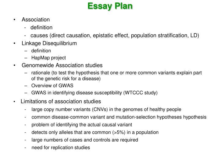 Essay Plan